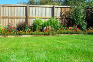 Clôture séparation jardin